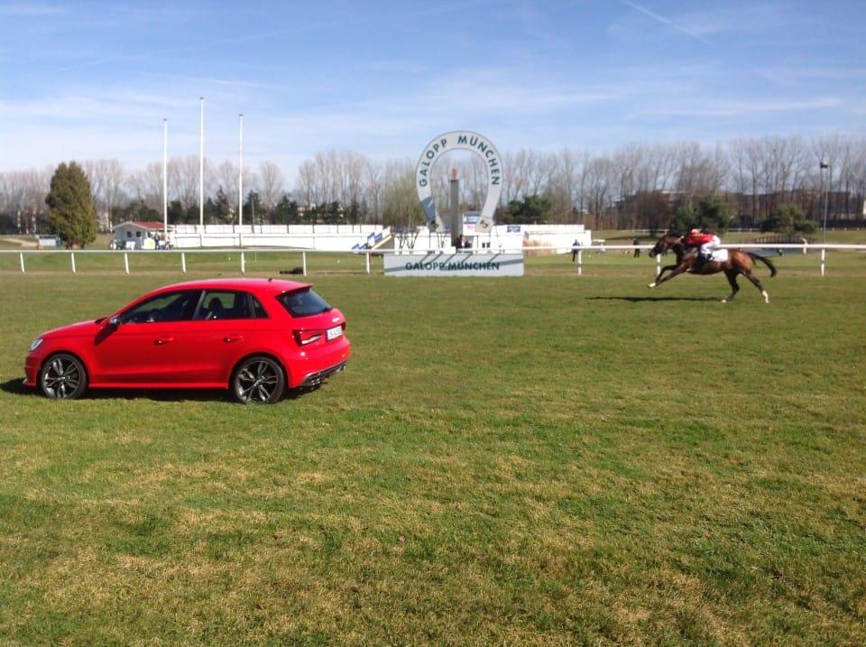 Lignon's Hero gegen 231 PS – Duell Pferd vs. Auto