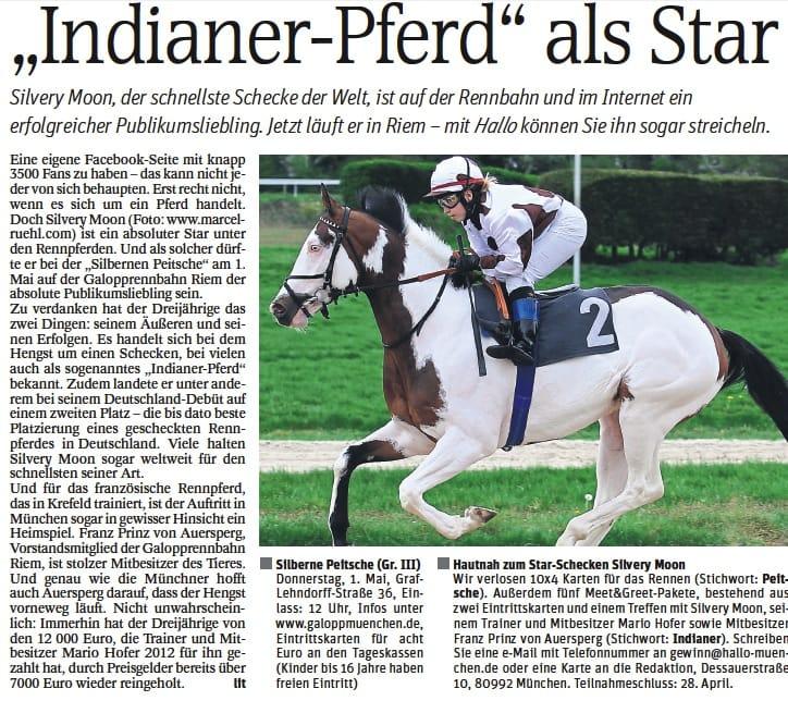 """Silvery Moon - das """"Indianer Pferd"""" kommt nach Riem"""