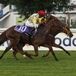 Unter Nicol Polli gewinnt Forever im Dallmayr Crema d'Oro-Rennen