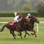 Das pferdewetten.de - Bavarian Classic aus Sicht des Handicapers